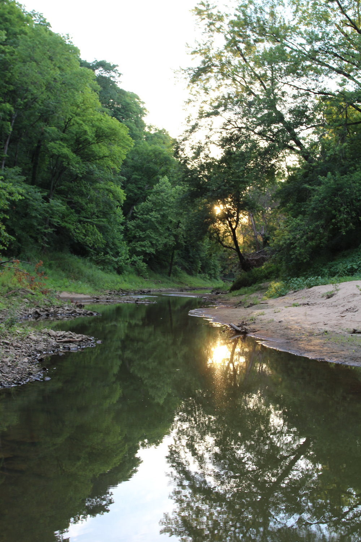 Perche Creek behind Breckenridge Park