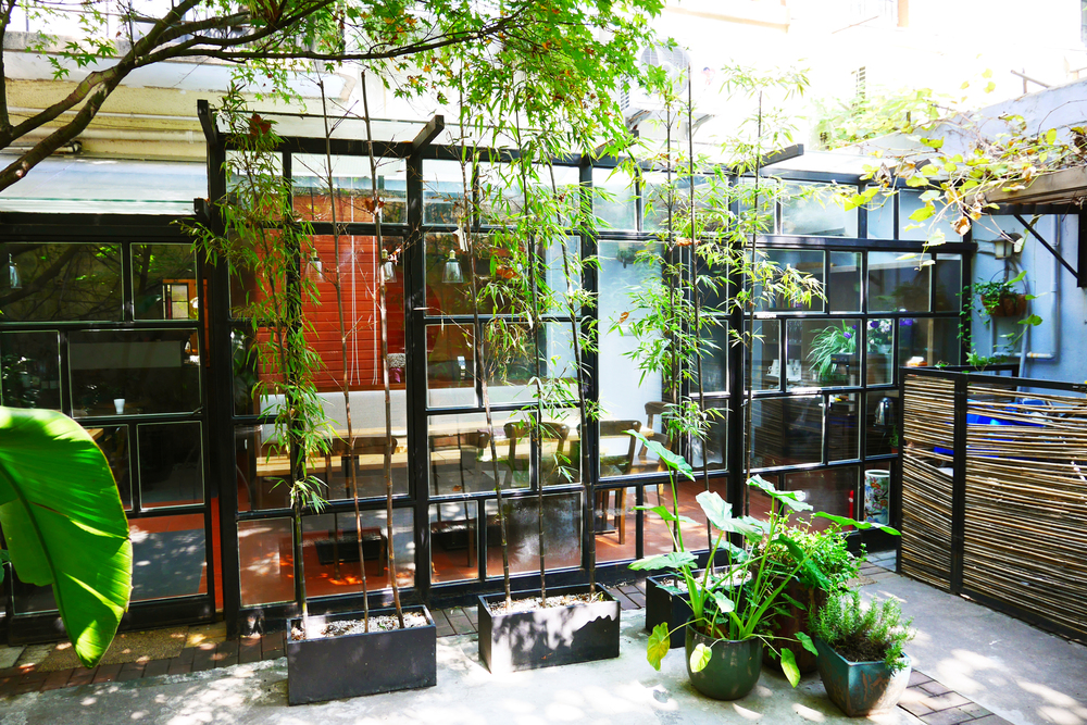 Quintet Shanghai bed and breakfast_yard (3)