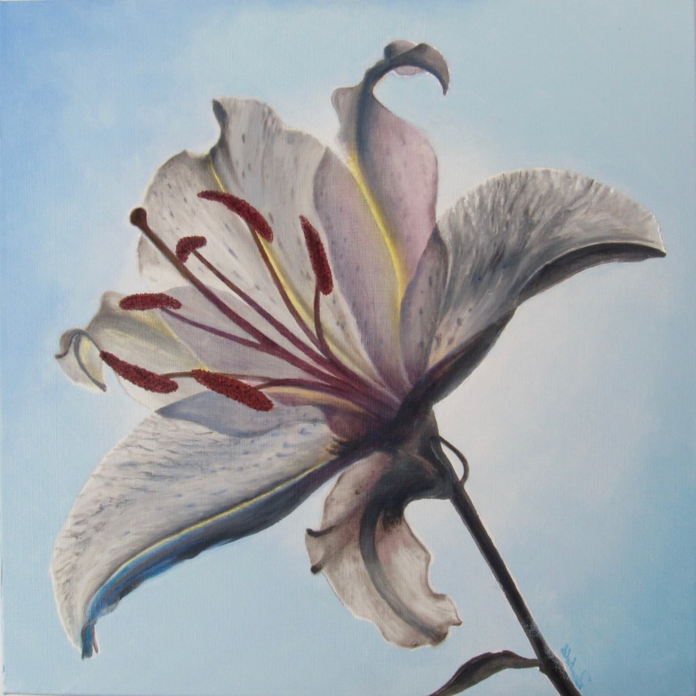 "shades of white <span class=""sizes-inline"">20 x 20 oil on canvas</span>"