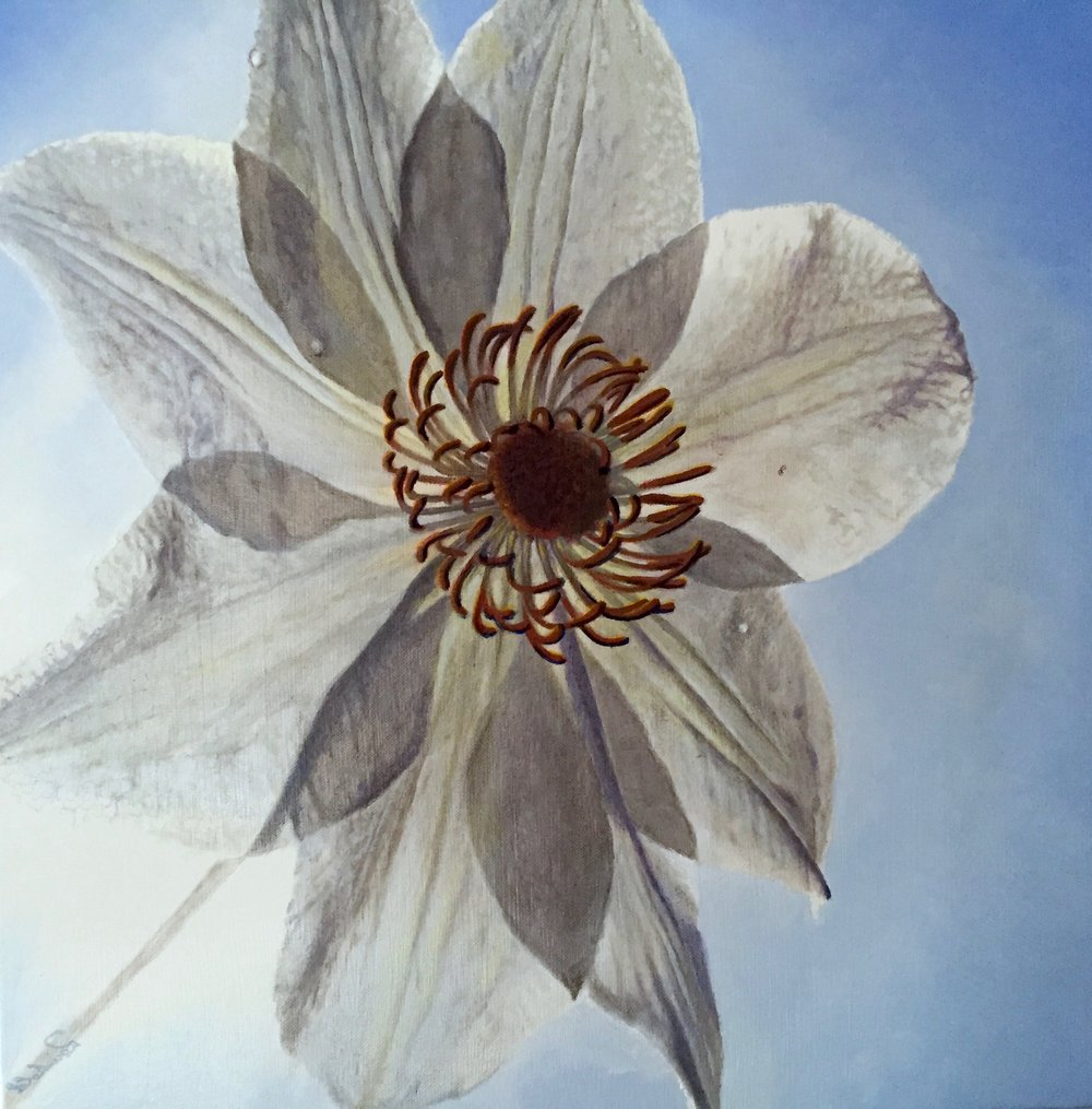"transcending white <span class=""sizes-inline"">20 x 20 oil on canvas</span>"