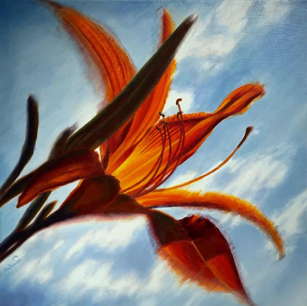 "orange bliss <span class=""sizes-inline"">20 x 20 oil on canvas</span>"