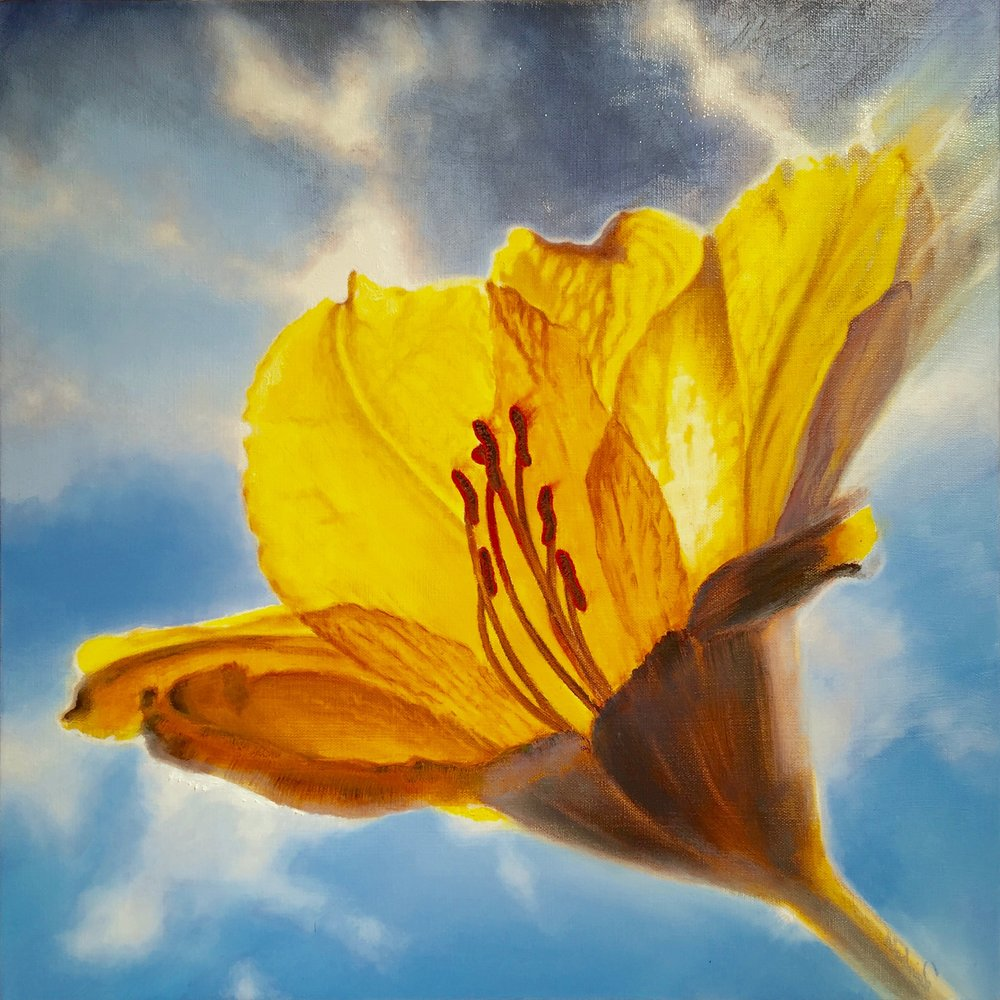 "yellow with envy <span class=""sizes-inline"">20 x 20 oil on canvas</span>"