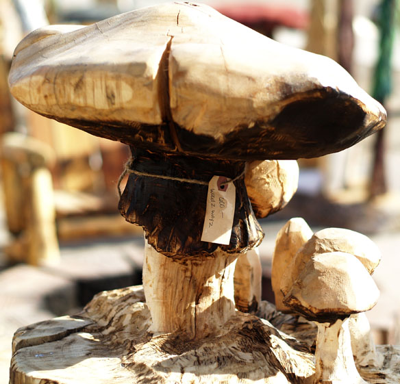 mushroom grove2.jpg