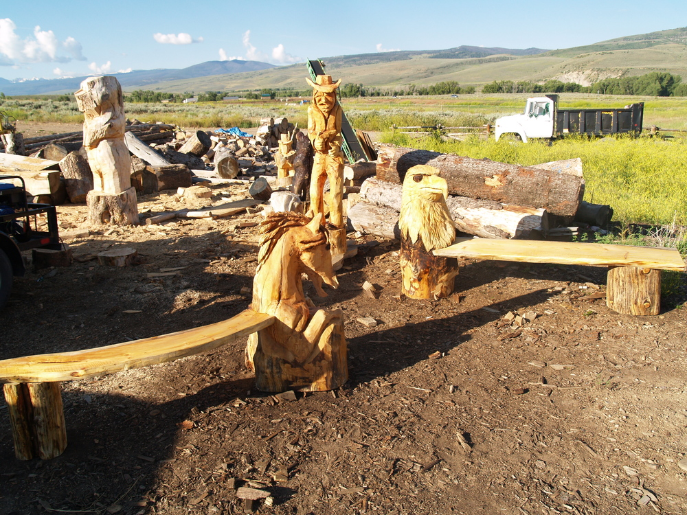 chainsaw-carved-benches.JPG