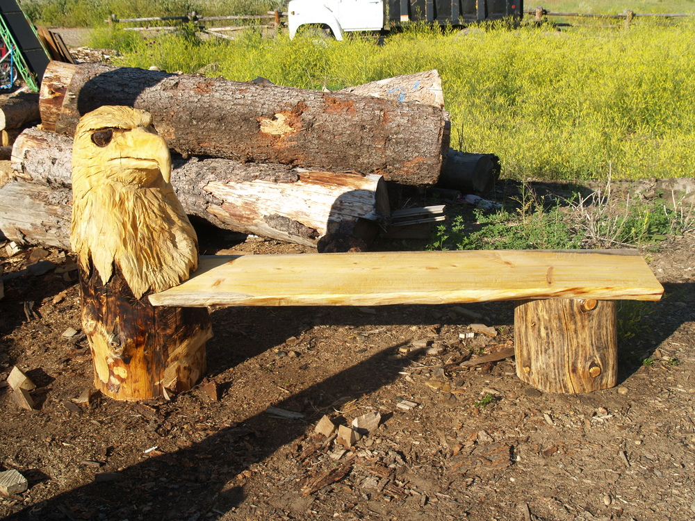 chainsaw-carved-eagle-bench.JPG