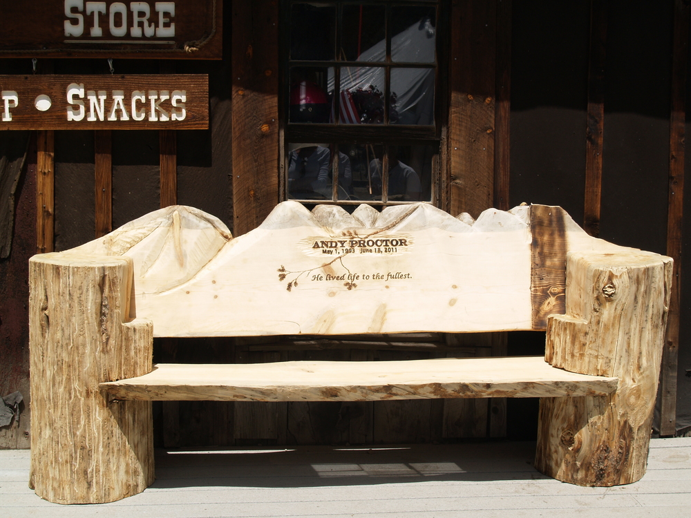chainsaw-carved-memorial-bench.JPG
