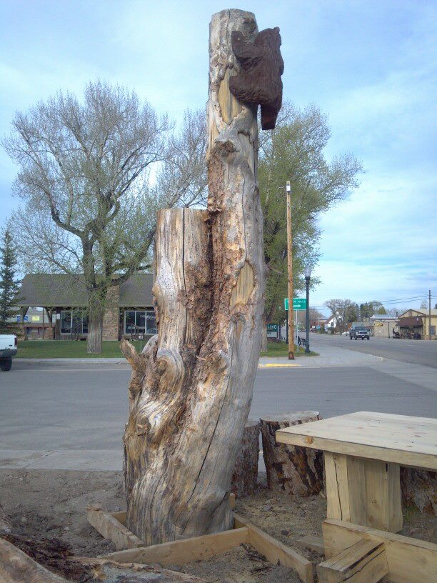 bear-climbing-tree-carving.jpg