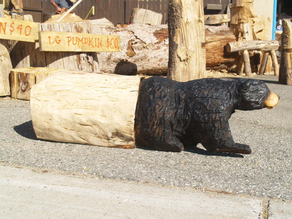 bear-coming-out-of-log-chainsaw.JPG