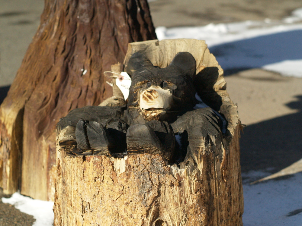bear-cub-in-log-carving.JPG
