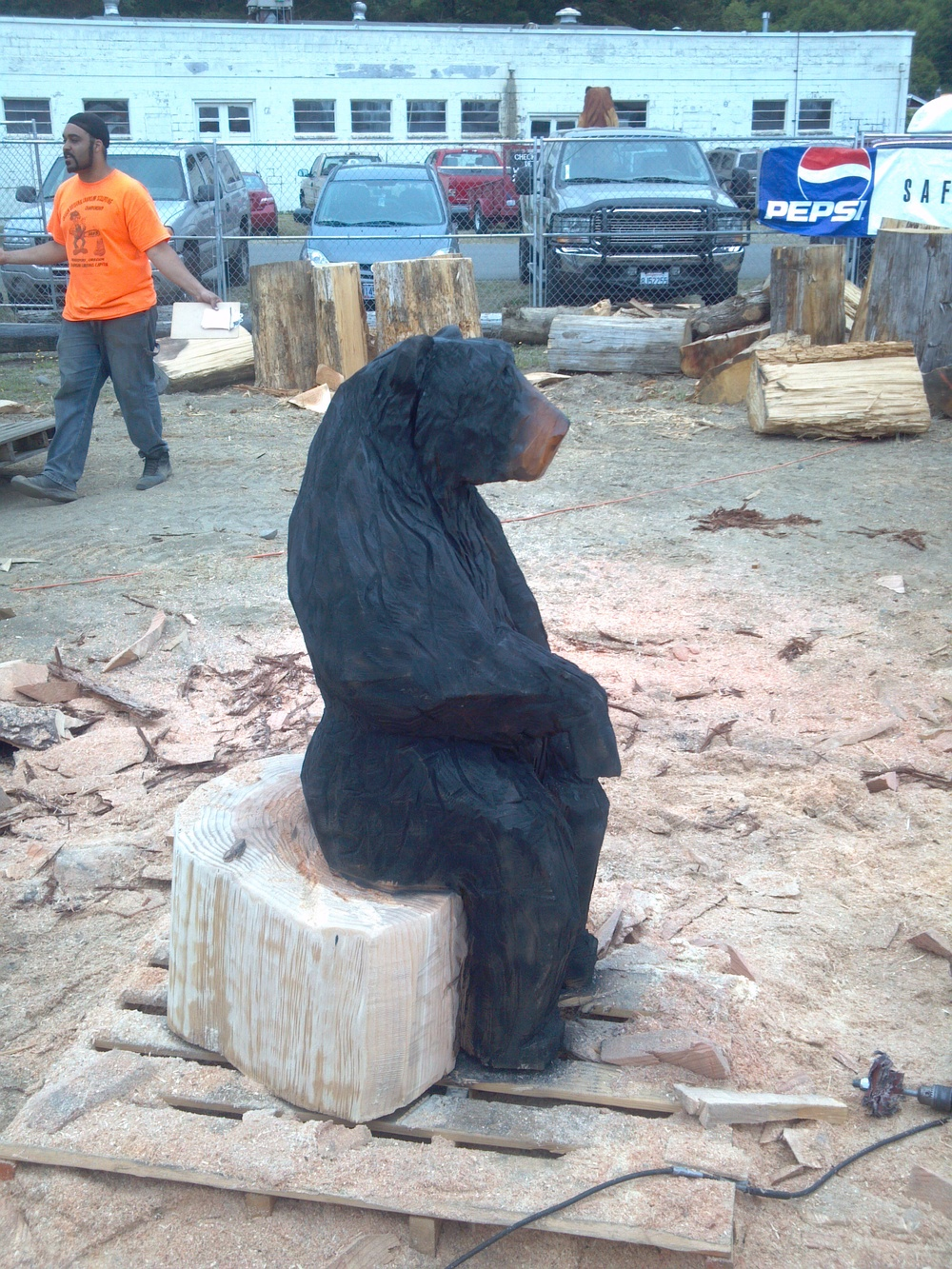 big-sitting-bear-chainsaw-carving.jpg