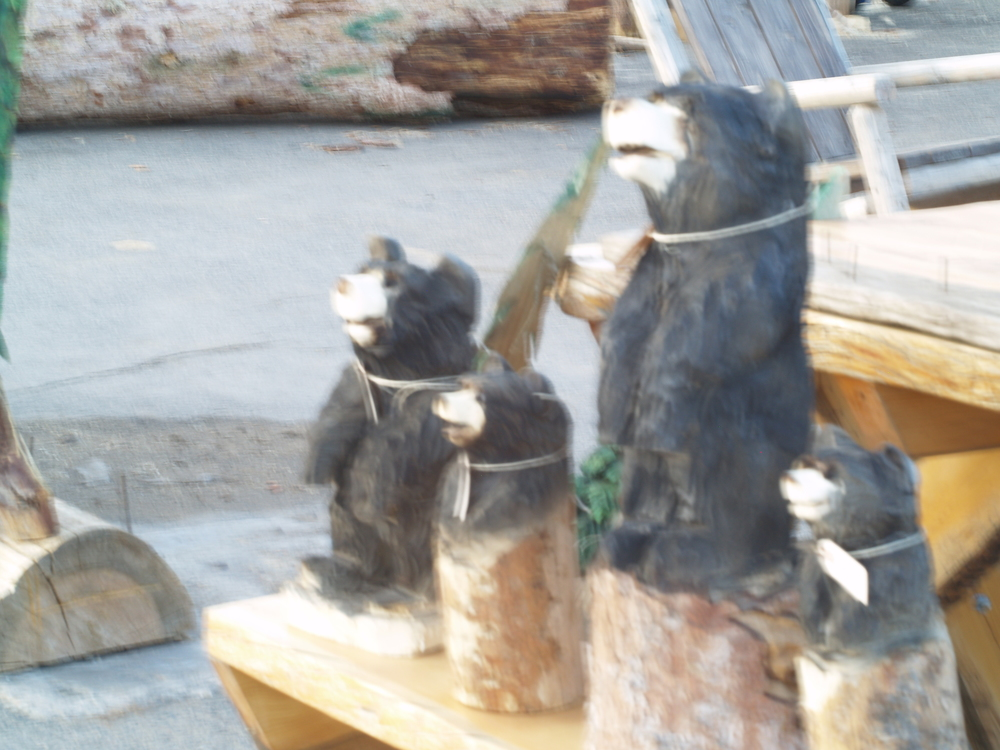 chainsaw-carvings.JPG