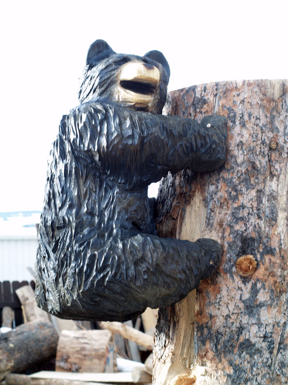 climbing bear 2.jpg