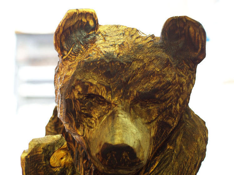 climbing-bear (3).jpg
