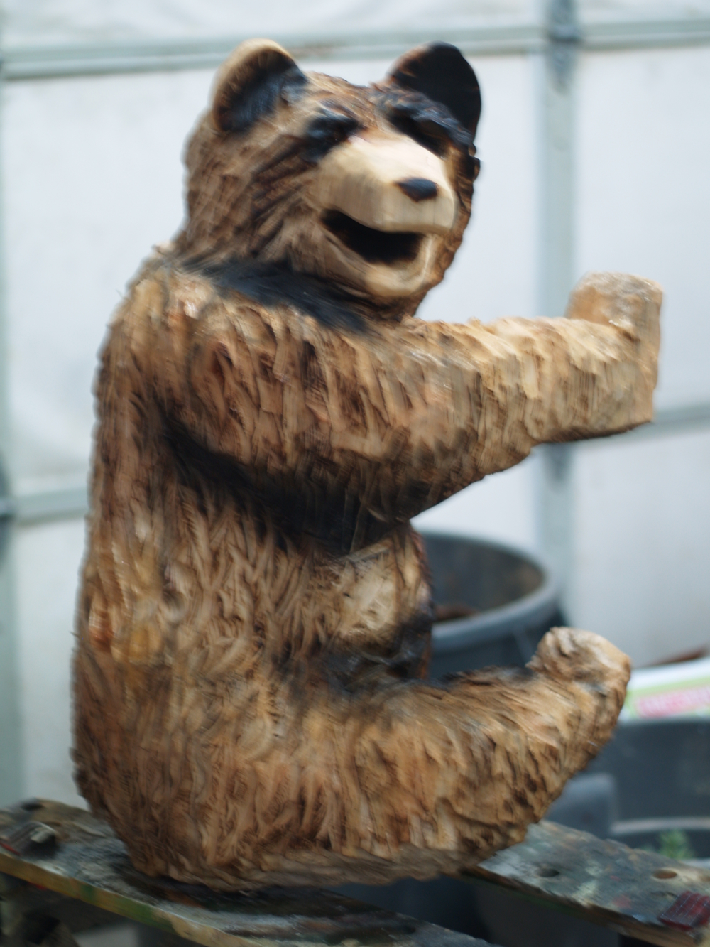 climbing-bear.JPG