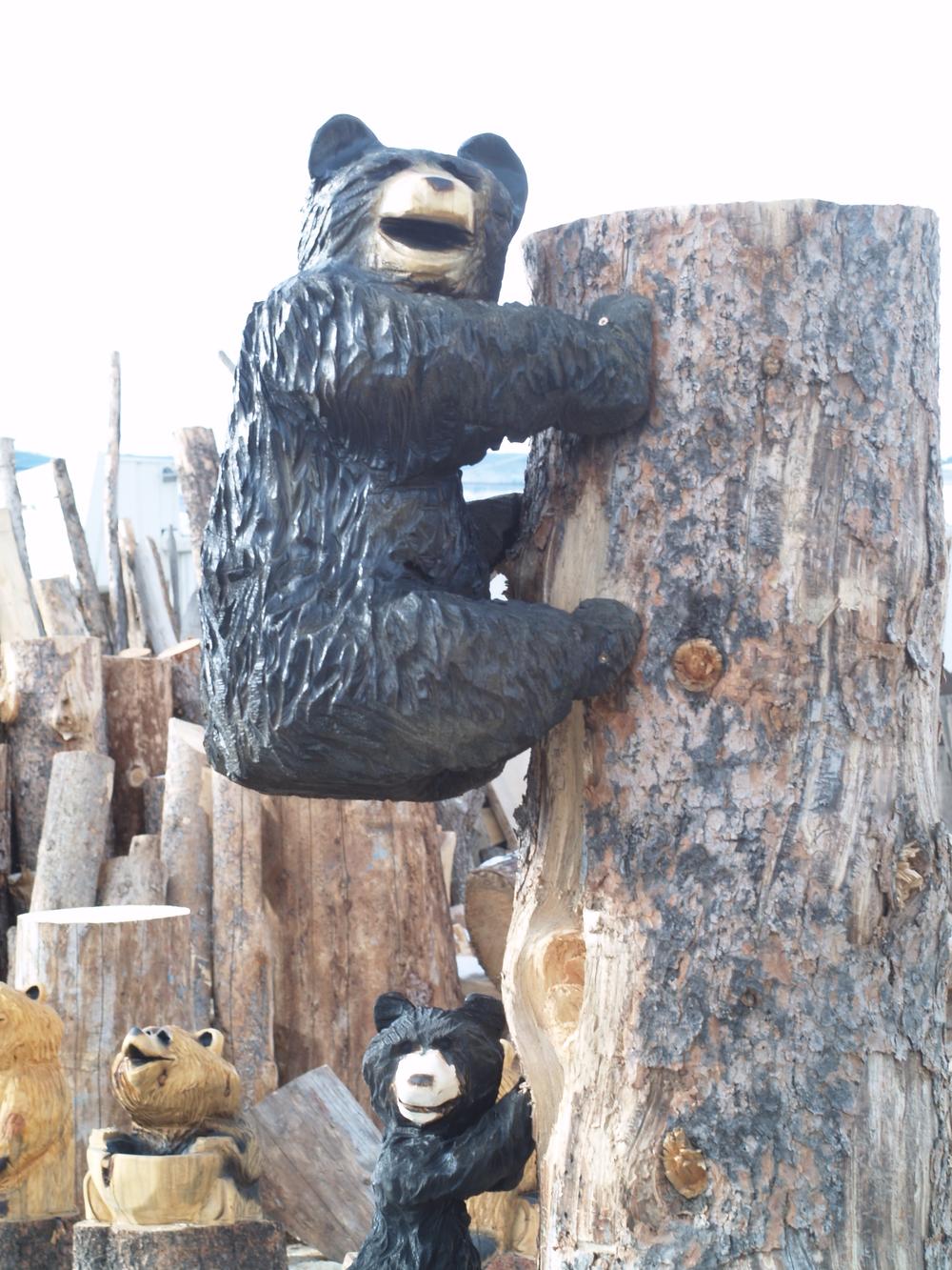 climbing-bears.JPG