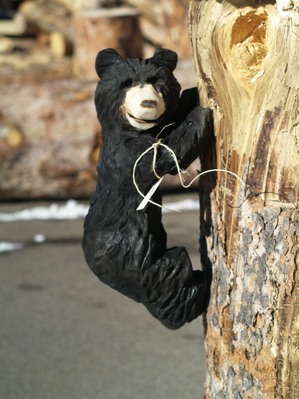 little-climbing-bear-cub.JPG