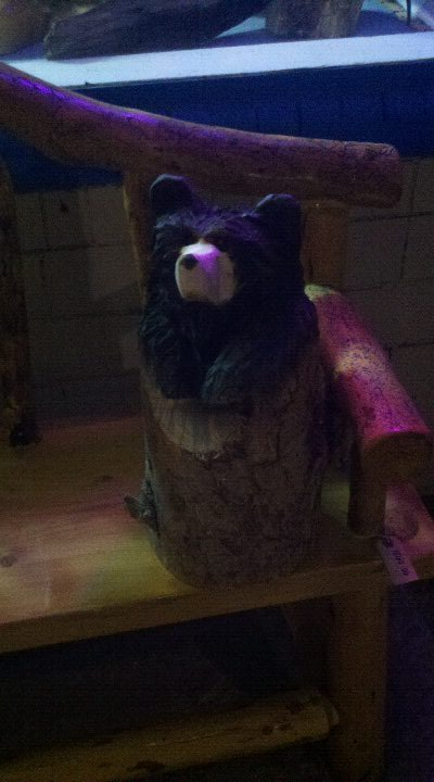 stump-bear-kremmling (2).jpg