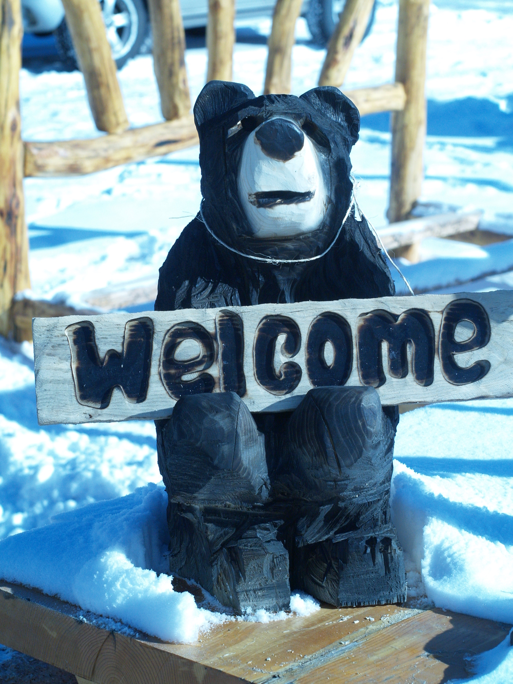 welcome-bear-carving.JPG