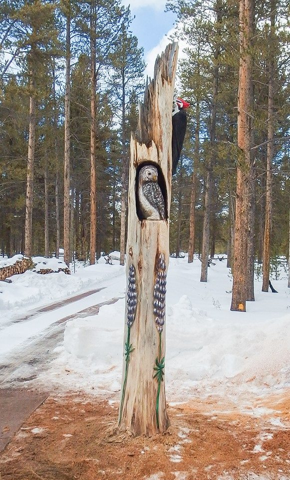 Wildlife totems add charm where dead trees once stood. We can carve onsite, or at our place and install them at yours.