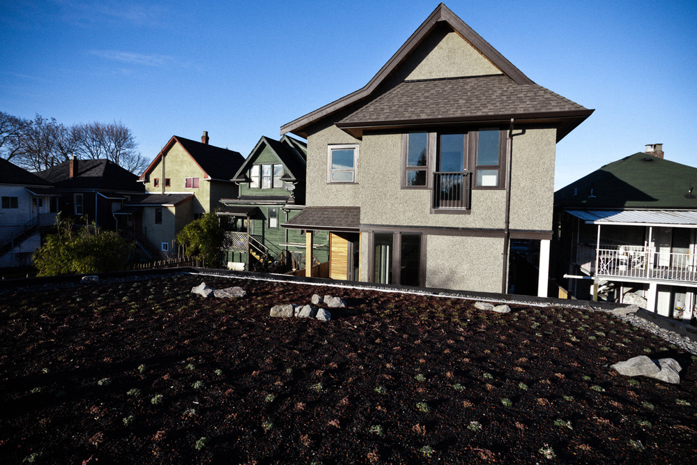Averra_Green_Roof_Renovation_Modern_Vancouver_05.jpg