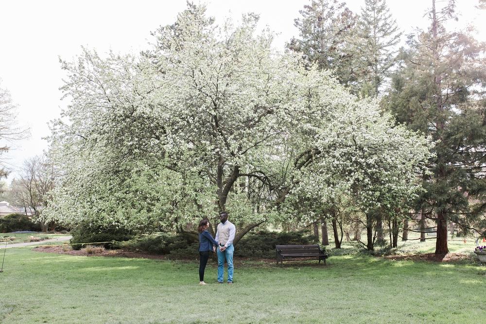 niagarafallsbotanical gardens-engagement_0005.jpg