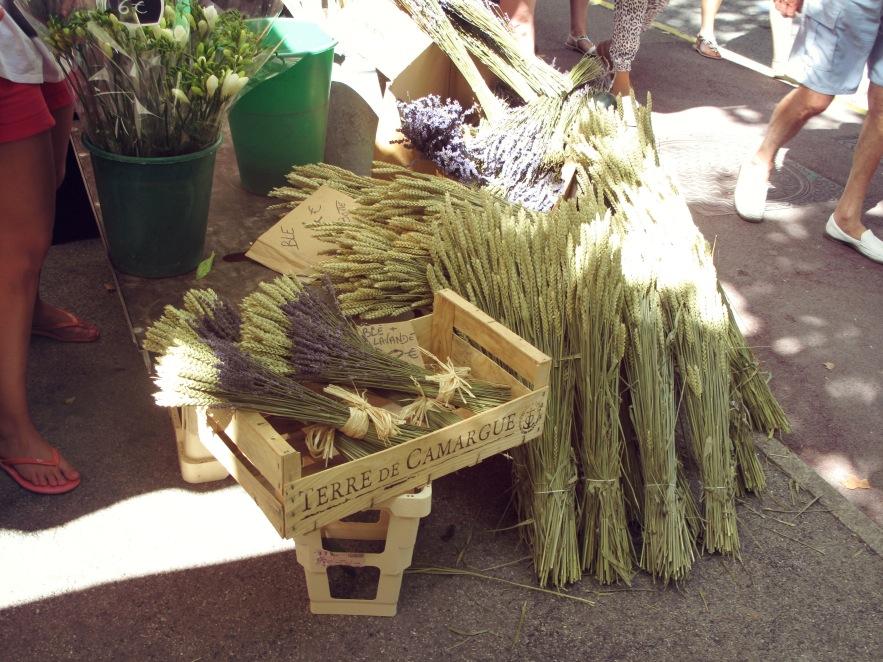 St Tropez_Lavender bunch_markets.JPG