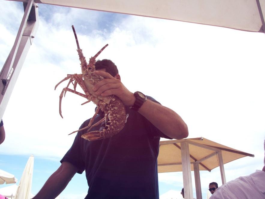 St Tropez_Lobster head.JPG