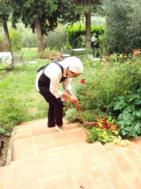 Tuscany_roseanna_herb gathering.JPG