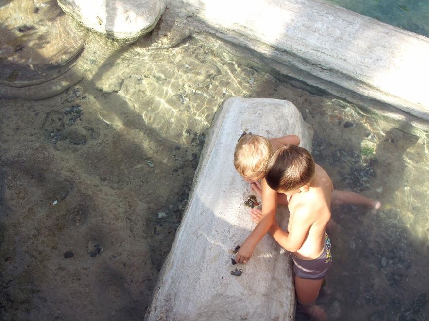 Pam_baths_little boys playing with rocks.JPG