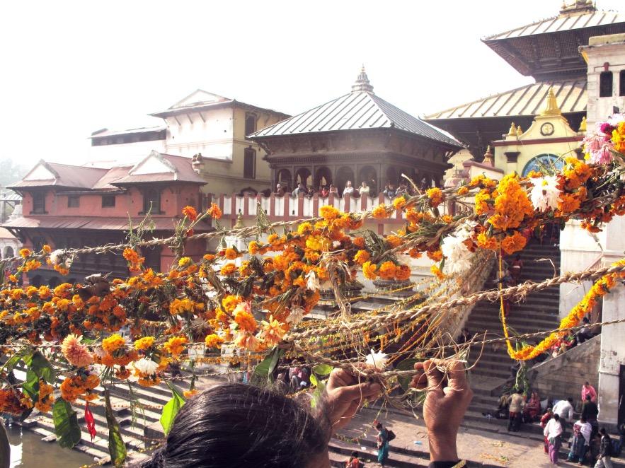 Kat_Pashupatinath Temple_flower lines up close.JPG