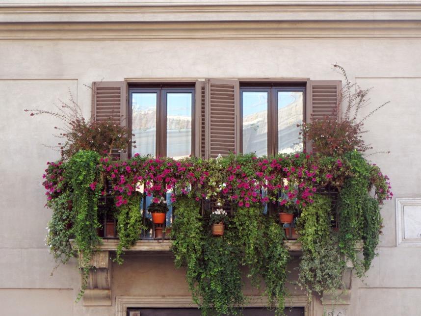 Rome_Balcony_Flower garden.JPG