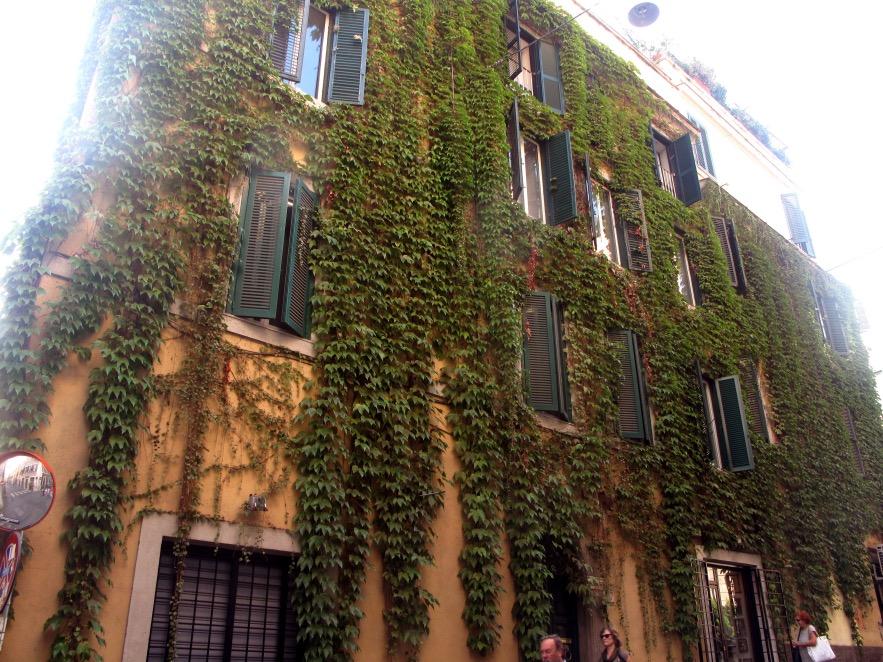 Rome_Vine covered building.JPG