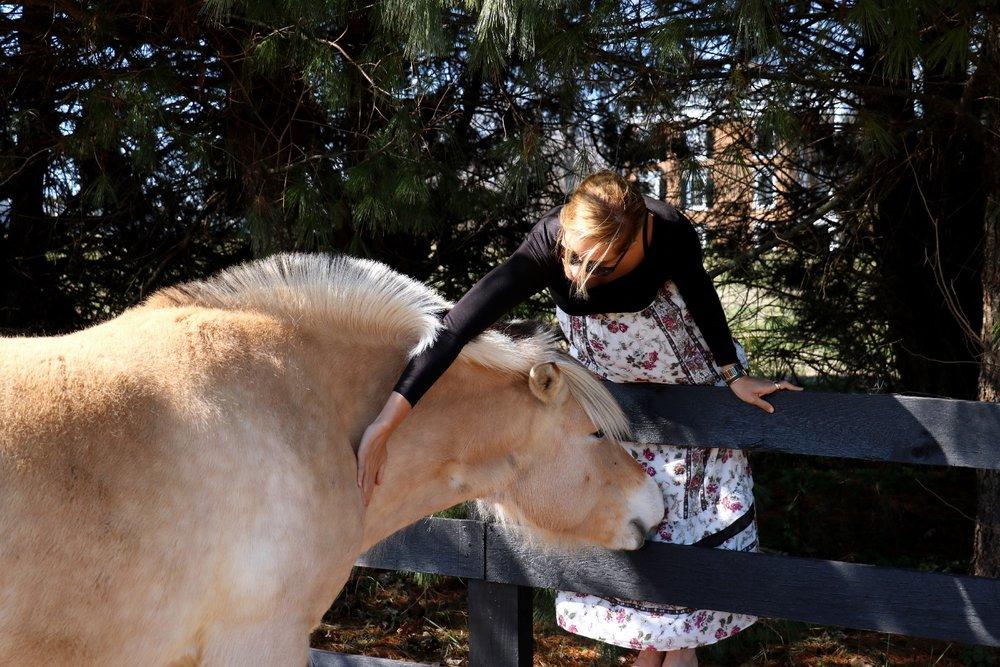 31_sally_horse_2.jpg