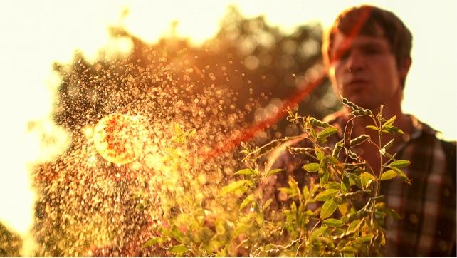 pesticideff1.jpg