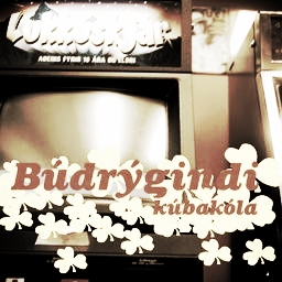 "2002: Búdrýgindi - Kúbakóla.   ""Best new artist"" of the  Icelandic Music Awards  2002."