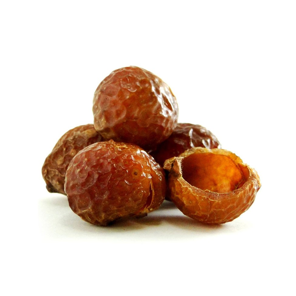The soap nuts