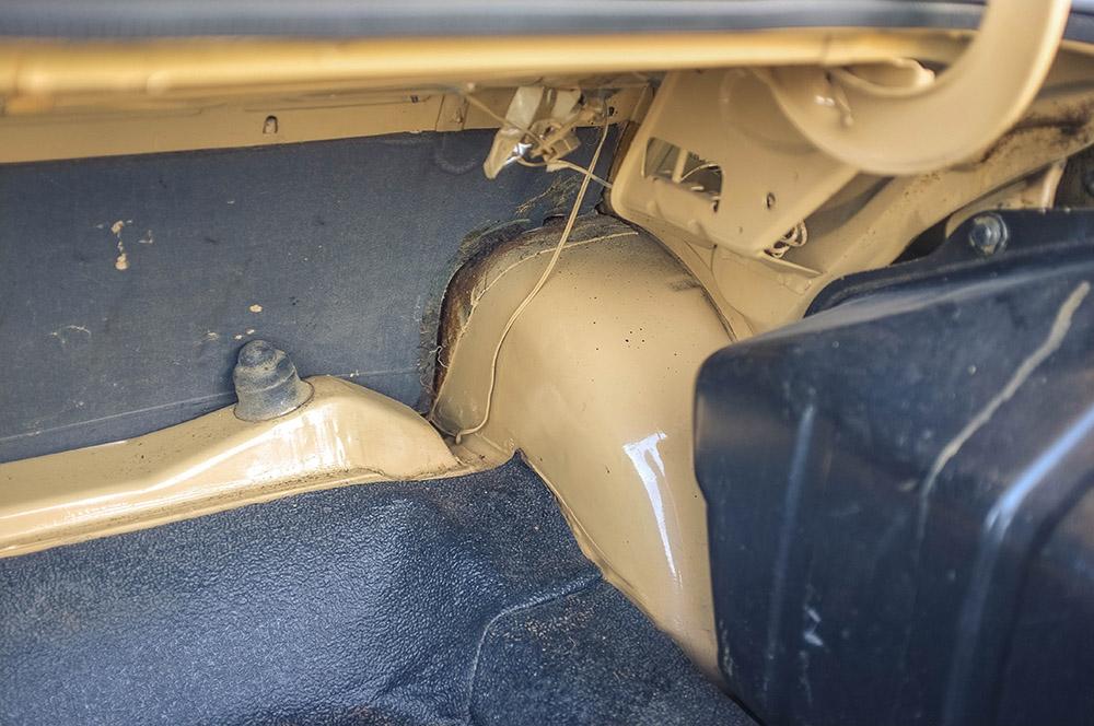 trunk_3.jpg