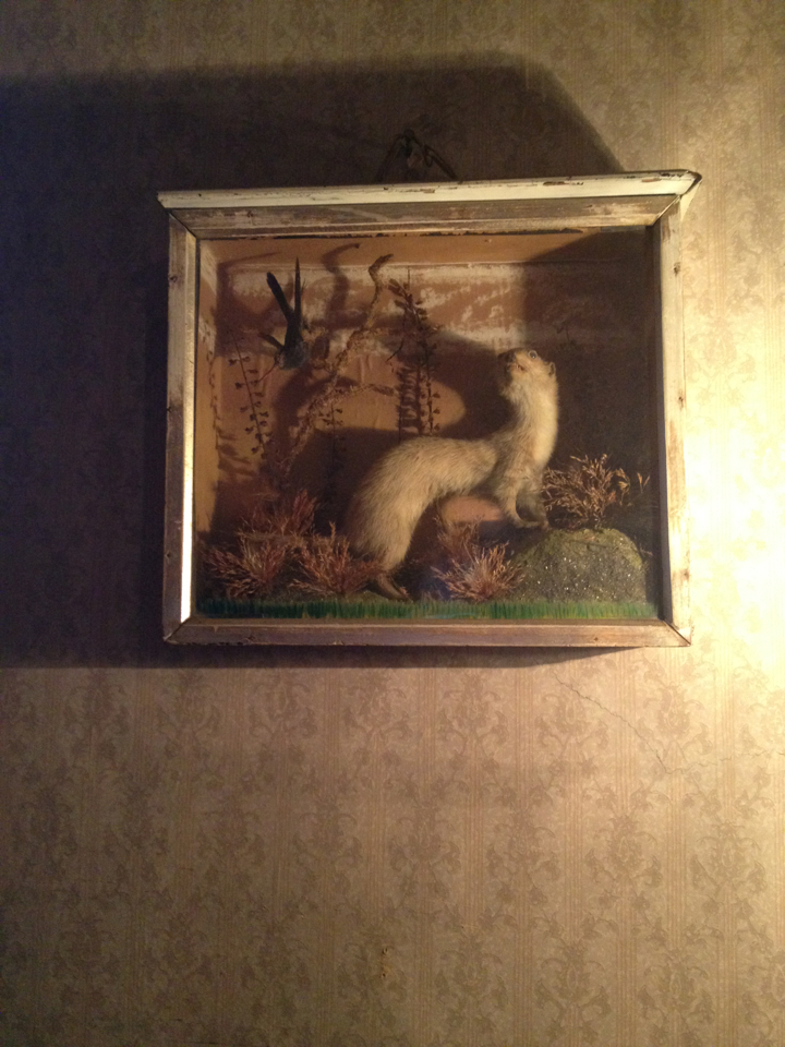 My favorite thing at the Sherlock Holmes museum. What does a ferret diorama have to do with anything, you ask? Please leave the museum promptly.