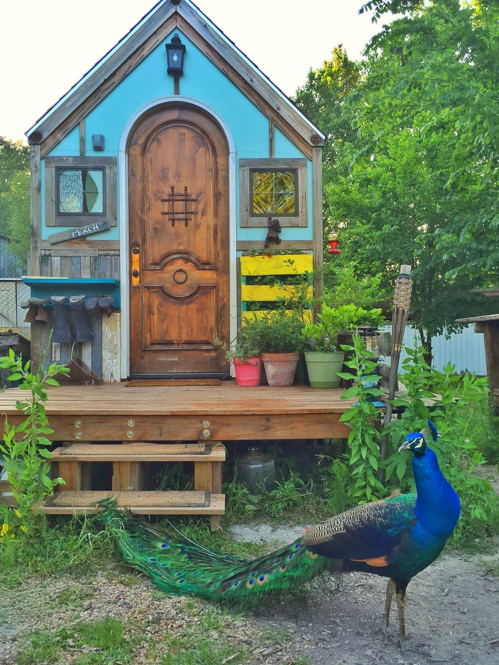 Some of Zack's handy work, As Featured on Tiny House Nation.  192 Sq. FT. Bird House, S2 E 6 , also known as The Window to the Wild tiny house