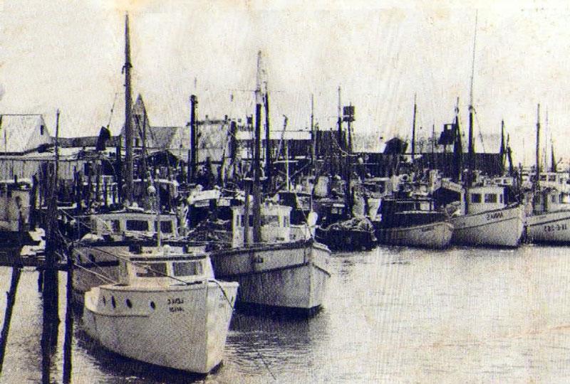 Fleet 2