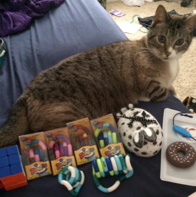 Photo description: A mostly grey Tabby cat sitting behind a set of stim toys, including a puzzles cube, 6 tangles, a beaded lizard and chewable necklaces.