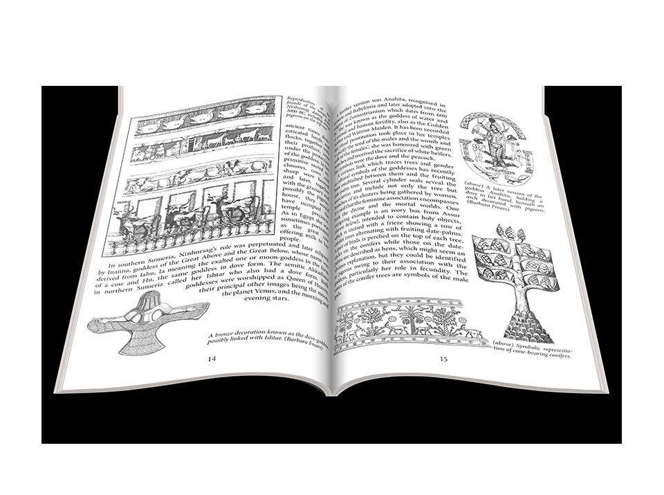 portfolio-book-design-PWW-ins1.png