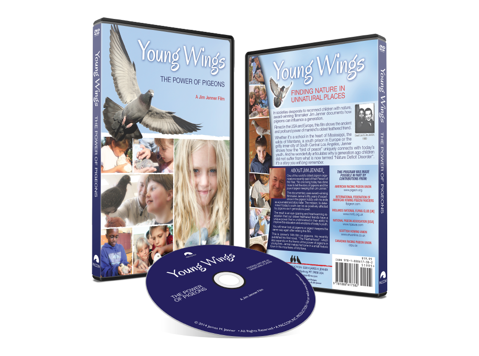 portfolio-paccom-youngwings.png