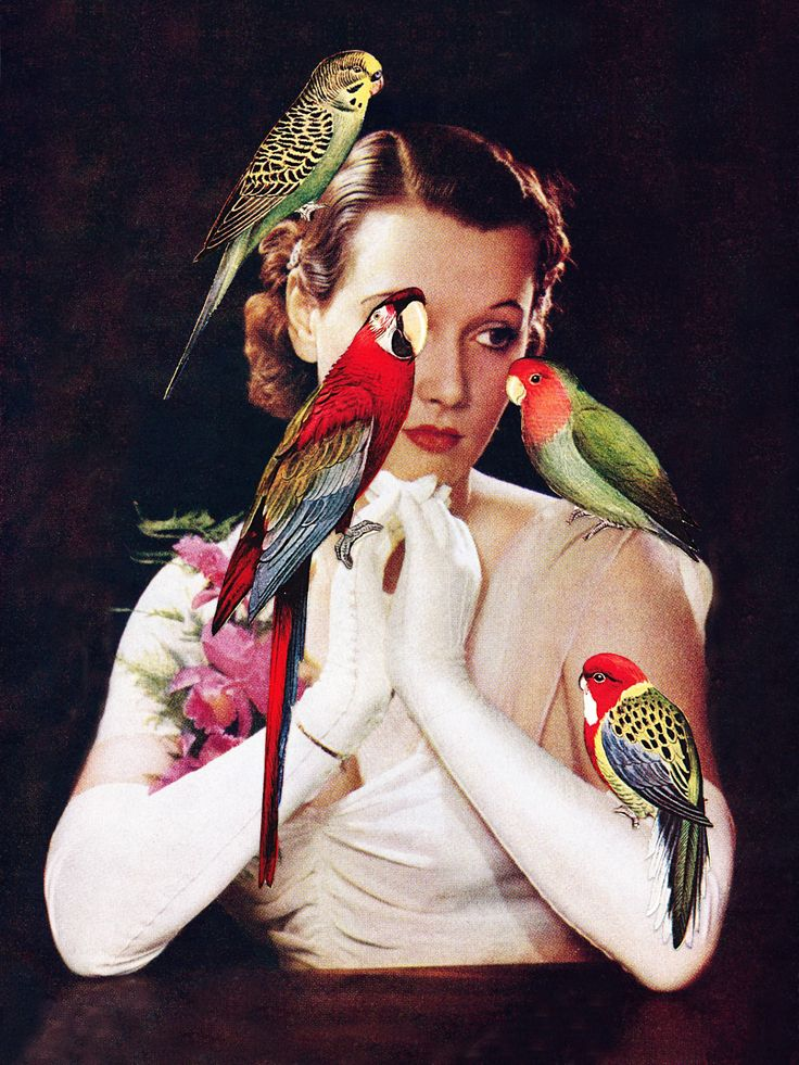 "Eugenia Loli, ""Bird Lady"""