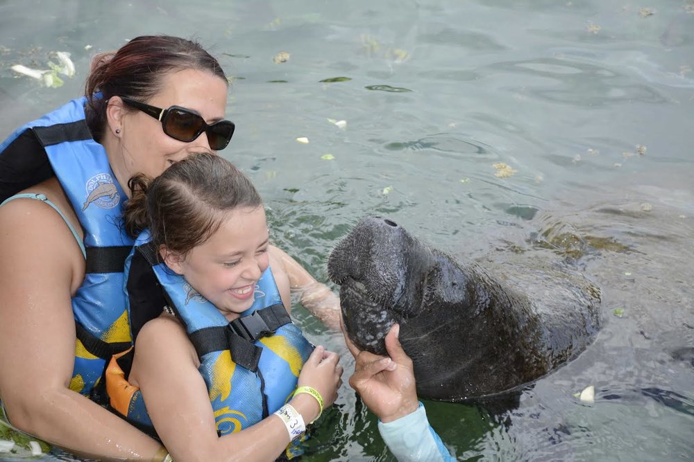 Michelle Gammond - Dolphin Discovery - Riviera Maya