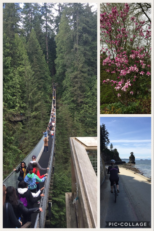 Scott Harvey - Vancouver Capilano suspension bridge, the cherry blossoms and Bike around the sea wall in Stanley Park and down to Granville Island!