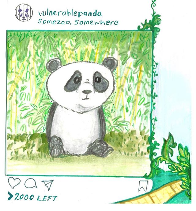 Vulnerable panda :( they are so cute but so few #illustration #panda #sketchbookproject