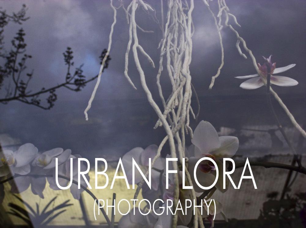 URBAN FLORA.jpg