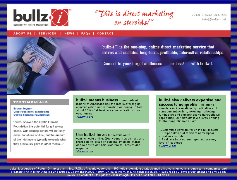 bullz-i Website and Logo Design (E-Marketing Company)
