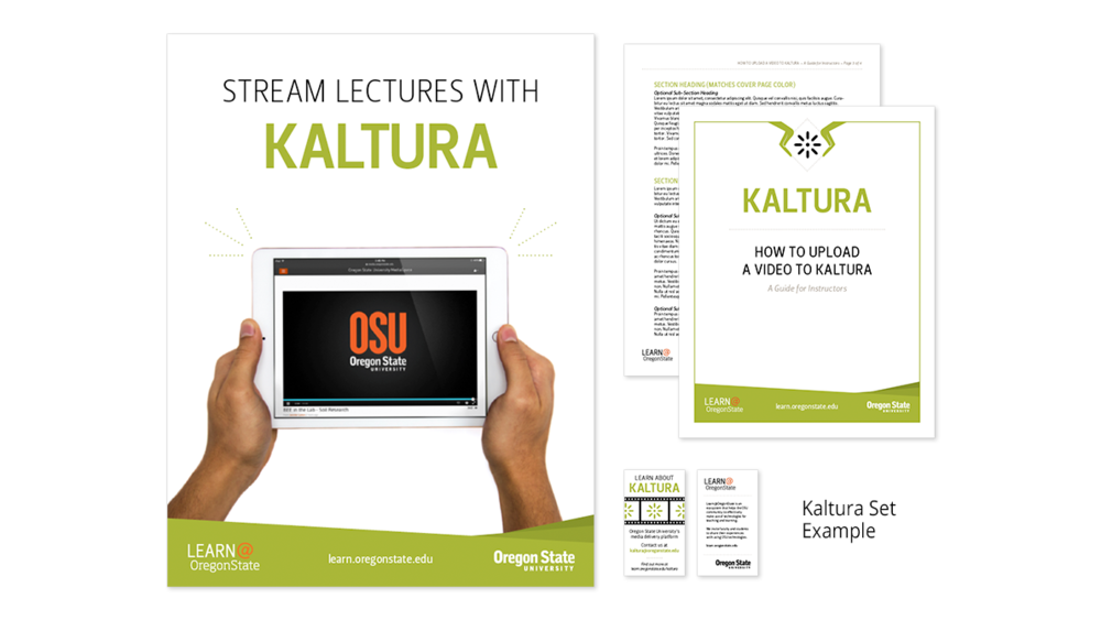 LearnExamples2-Kaltura.png